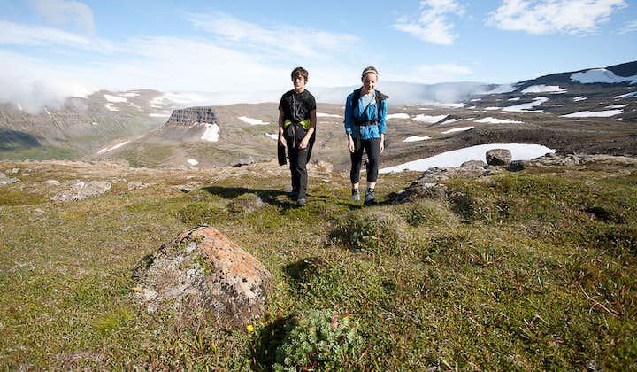 Заповедник Хортнстрандир | Однодневный тур в Западных фьордах