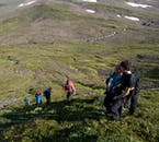 Hiking in Hornstrandir in the summer reveals beautiful views of the Westfjords.