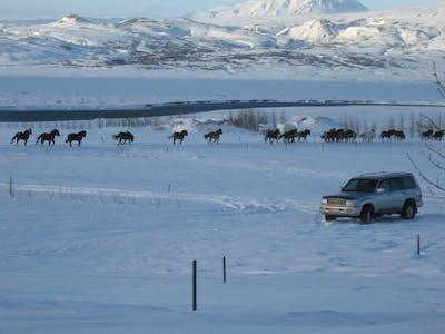 Kjarnholt, Suðurland