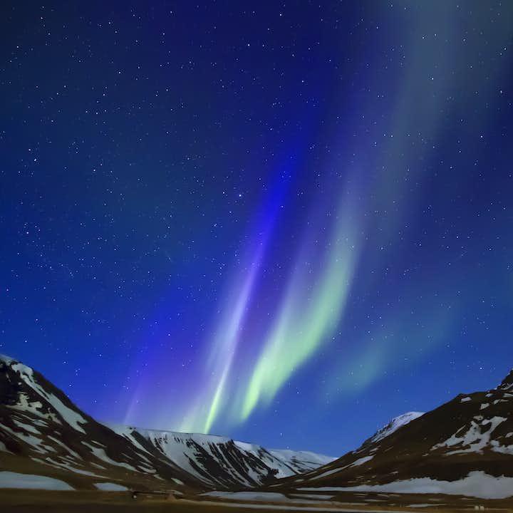 Nordlyssafari   Tur med lydguide på 10 språk