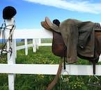 乗馬に必要なサドルなどはガイドが用意してくれます