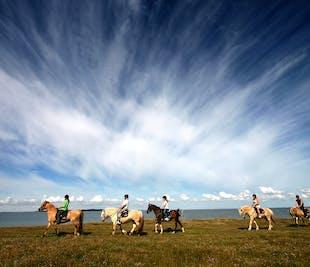 Excursión a caballo y viaje al Círculo Dorado | Audioguía en español