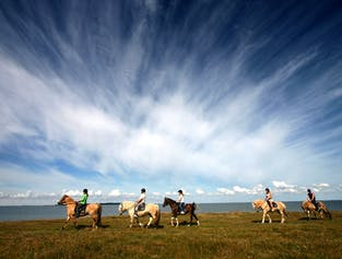 Golden Circle classic and horse-riding | Audio guided in 10 languages