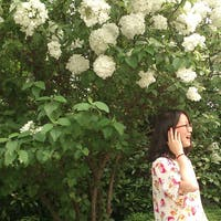 Mei Jinjing