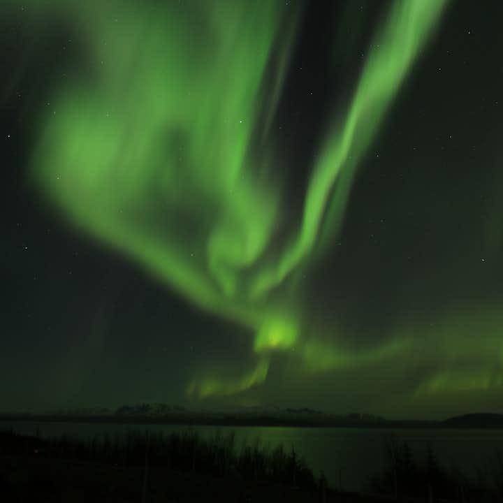 格安オーロラバスツアー Aurora Reykjavik入場券付き