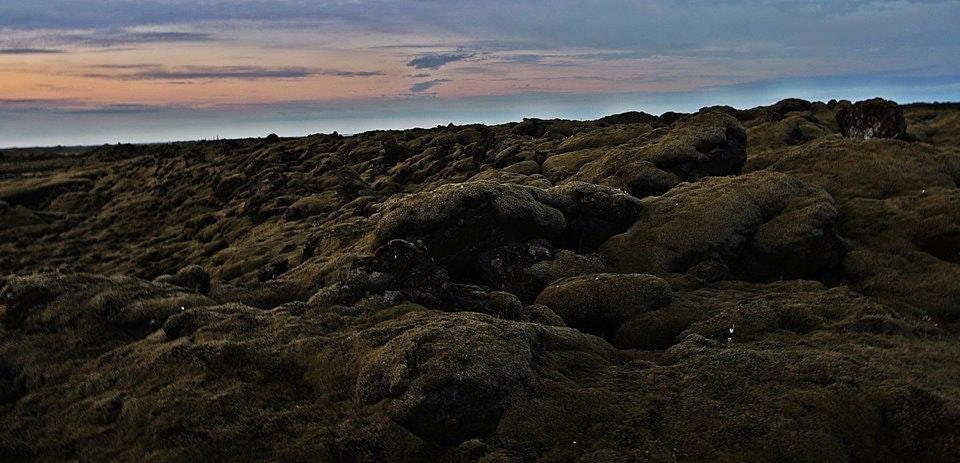 冰岛南部的苔藓