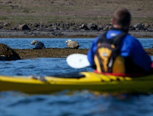 2 Day Sea Kayaking tour - overnight on a remote Island