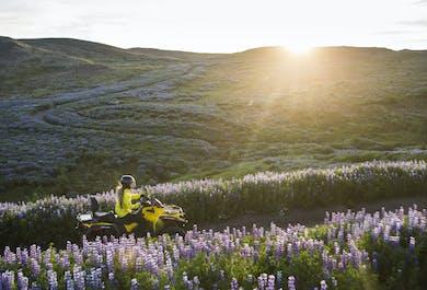 Icelandic Bachelor's Weekend   ATVs, Burgers, Clay Pigeon Shooting