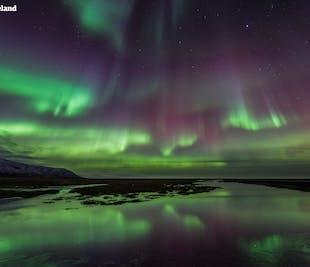 7-tägiges Winter-Reisepaket Nordlichter- und Eishöhlen-Abenteuer