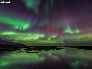 Zorza polarna na Islandii jest jedną z najważniejszych atrakcji jakie zobaczysz zimą na wyspie.