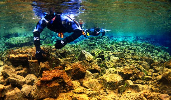 A guest snorkelling through the crystal clear, colourful waters of the Silfra Fissure.