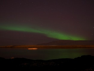 Northern Lights & Whale Watching