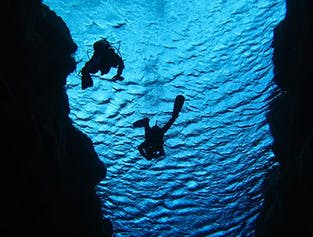 Diving in Silfra Fissure & Whale Watching in Faxafloi Bay
