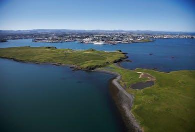 Whale Watching & Videy Island