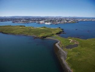 Whale Watching & Viðey Island