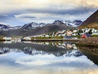 Whale Watching in Akureyri and Coastal Tour to Siglufjörður
