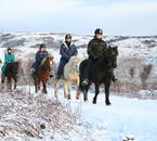 It takes much more than a little snow to deter an Icelandic horse.