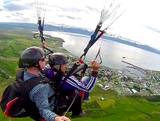 Whales & Paragliding
