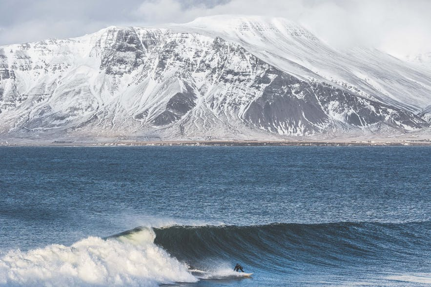 Surfing in Iceland