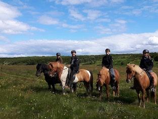 Gjárétt Horse Riding Tour