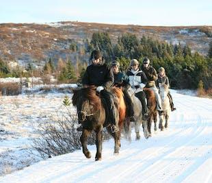 Jazda konno i rejs polowania na zorzę polarną