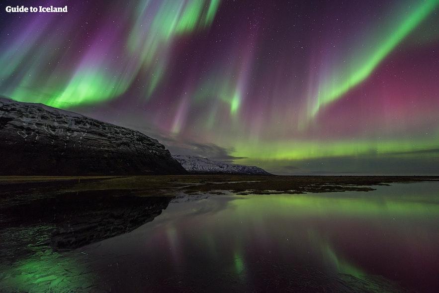 冬季在冰岛参加环岛团追极光
