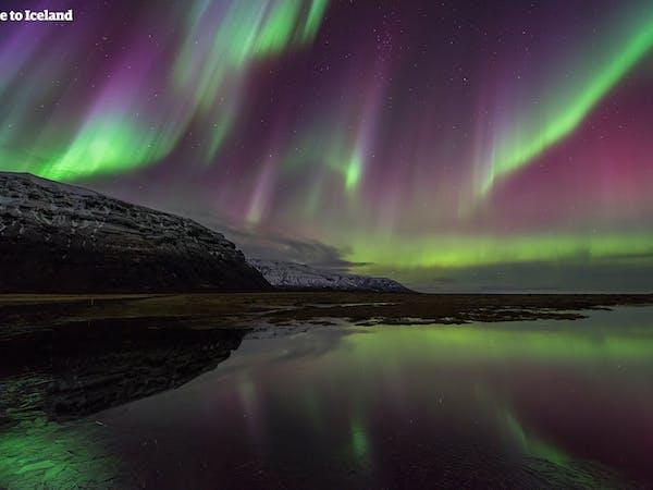 Aurora Hunters