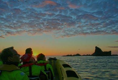 Bootstour rund um Vestmannaeyjar