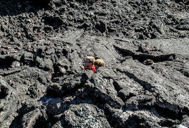 Lava-Wanderung bei Mývatn | Vulkan Krafla