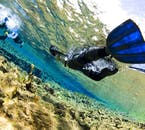 Plongée snorkeling à Silfra en petit groupe