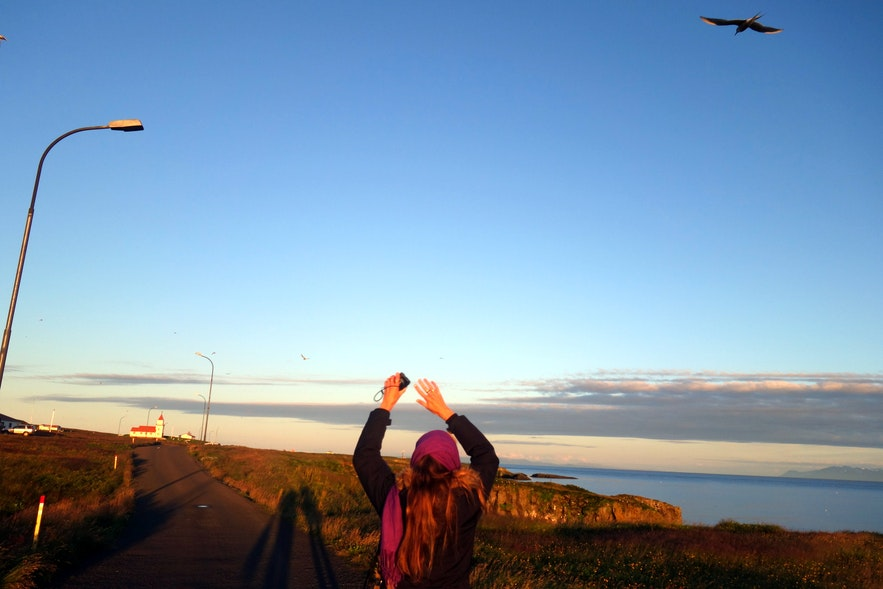 Visiting Grímsey Island - the Gem of the Arctic Circle in North-Iceland