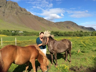 Hiking Tour with Views of Reykjavik| Meet the Icelandic Horse and Take a Swim in a Lovely Afternoon