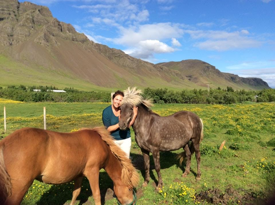 Mix It Up - Hiking Tour with Views of Reykjavik| Meet the Icelandic Horse and Take a Swim in a lovel