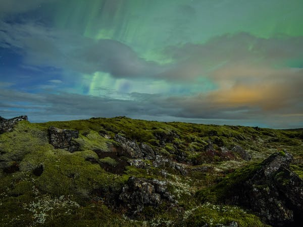 Arctic Tours