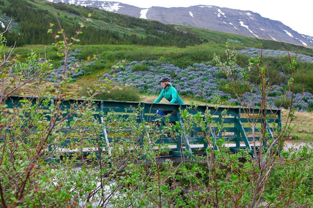 Biking Around the Walls in Ísafjörður