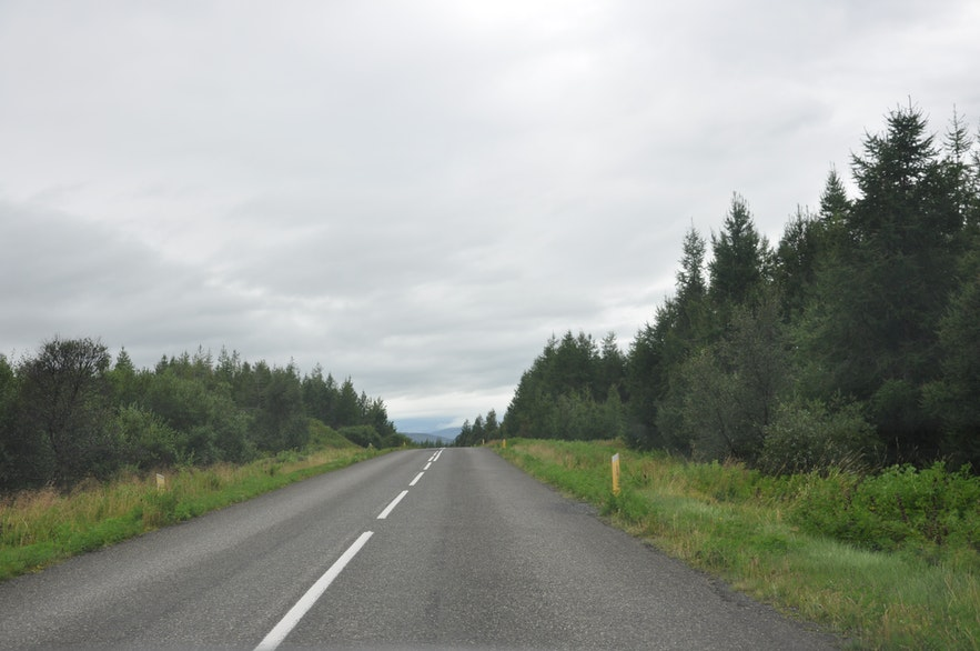 Driving through Hallormsstaðaskógur forest