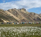 Landmannalaugar is better known for its hiking and camping than its Buggy tours.