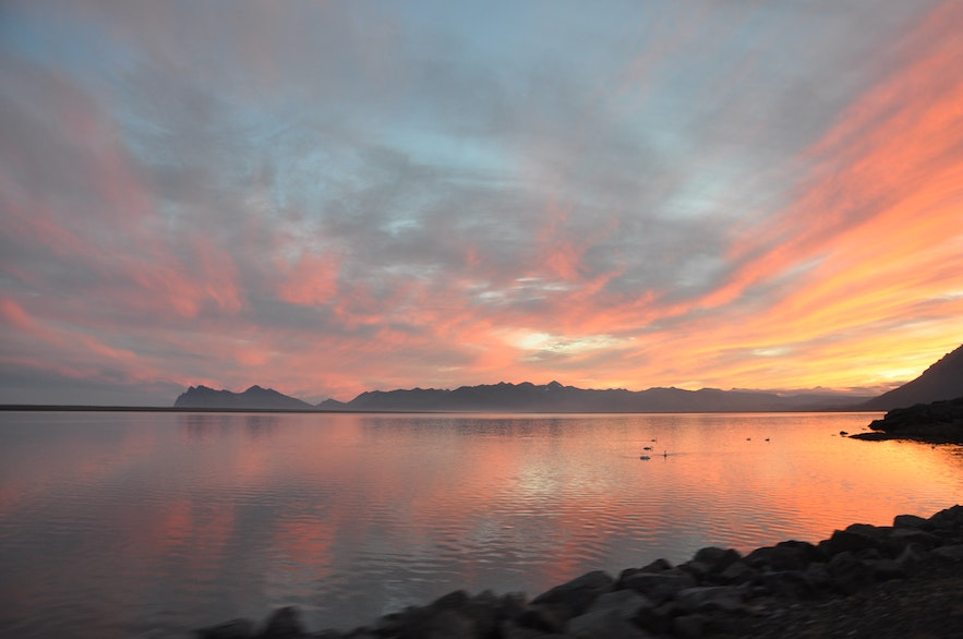 Sunset and swans in East Iceland