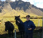 Enjoy mountain views as you meet the Icelandic horse in its local nature.