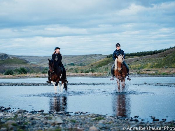 Riding Tours South Iceland
