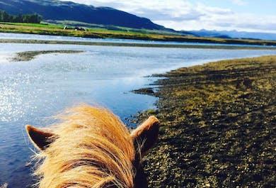 1 heure de balade à cheval vers Fludir