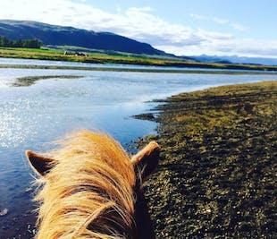 ทัวร์ขี่ม้า 1ชั่วโมงจากเมืองฟลูดิร์ทางใต้ของประเทศไอซ์แลนด์