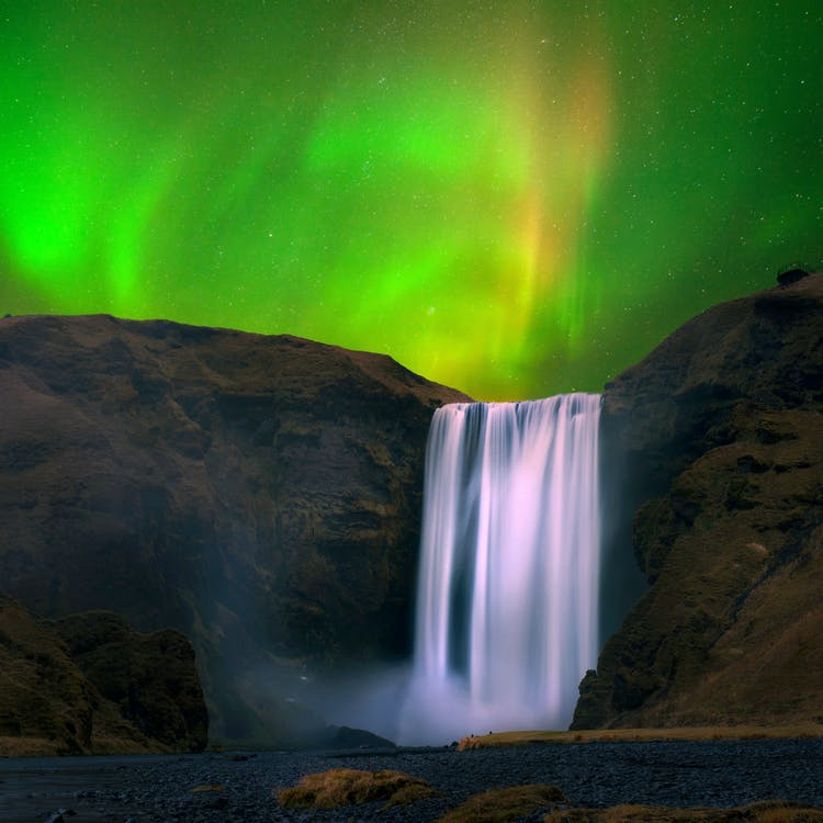 The Northern Lights dancing majestically above the sublime South Coast feature, Skógafoss.