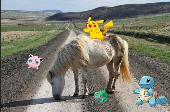 A trip full of Adventure in Iceland knocking down Pokemons