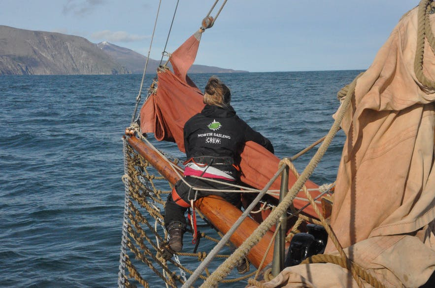 North Sailing whalewatching from Húsavík