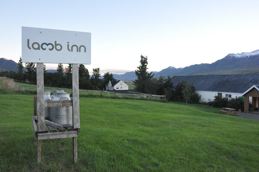 Lamb-inn guesthouse near Akureyri