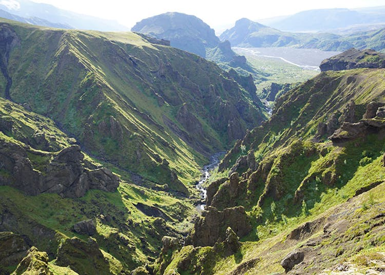 Þórsmörk valley is known as one of the most lush areas in Iceland.