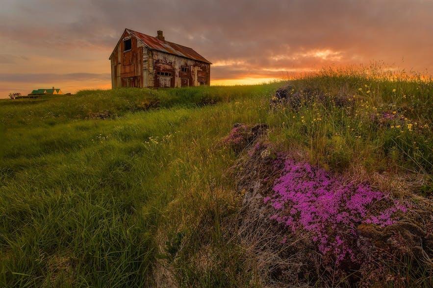 Auch im Umland Reykjavíks gibt es tolle Landschaften zu entdecken