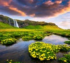 7 Day Guided Ring Road Tour | Explore the Circle of Iceland