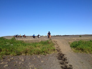 Árbæjarfoss Riding Tours